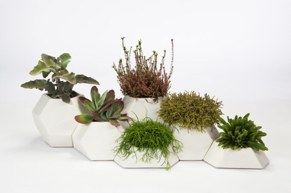 Ma ce ta Modular Faceted Garden Pots by Pott in main home furnishings  Category