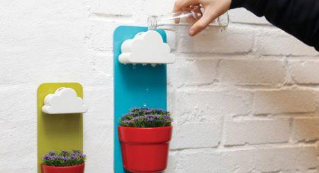 Rainy Pots Keep Plants Happy + Healthy
