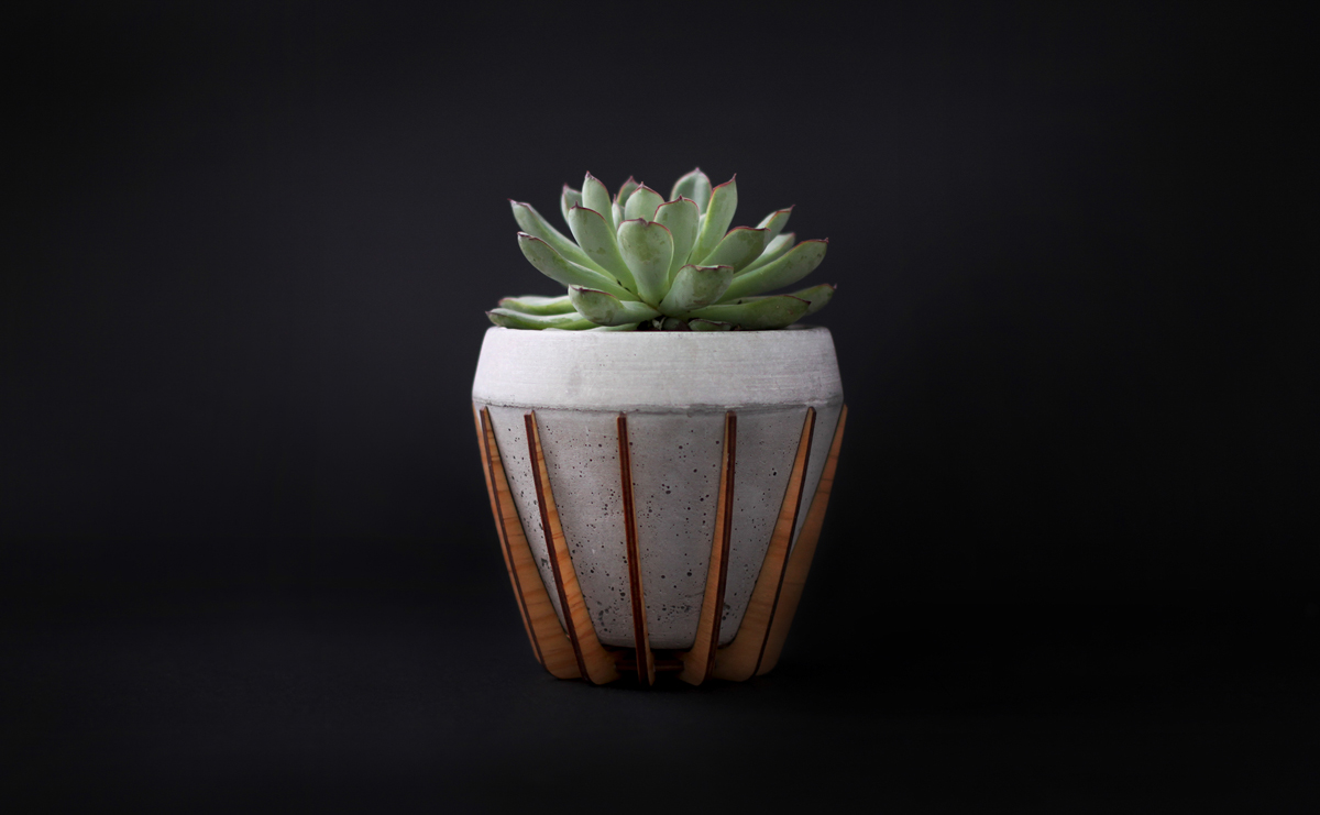 A Small Wood and Concrete Pot Called La Morena