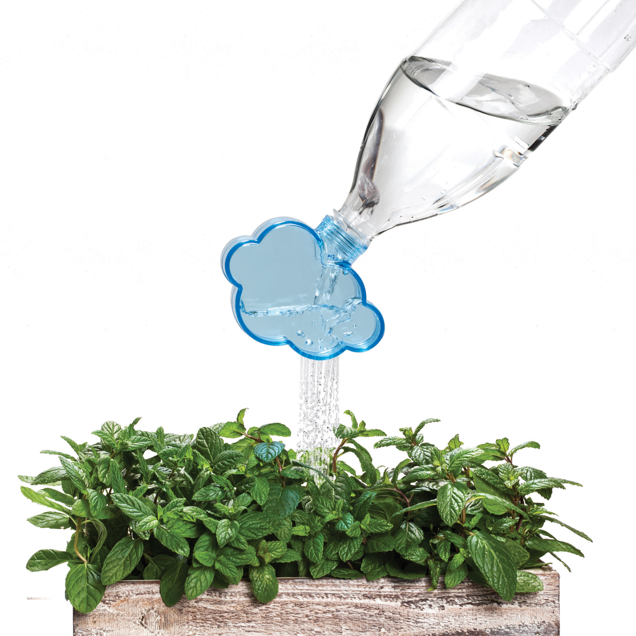 Rainmaker: A Plant Watering Cloud