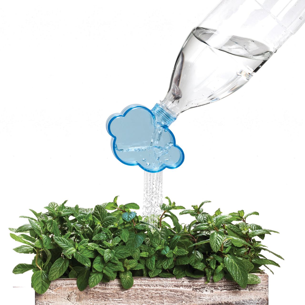 Rainmaker: A Plant Watering Cloud