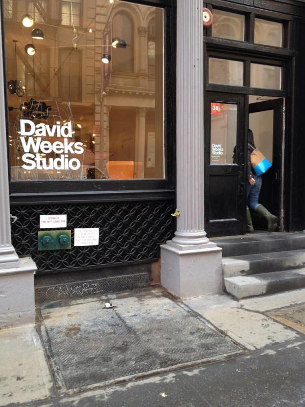 Dailies-David-Weeks-11_store