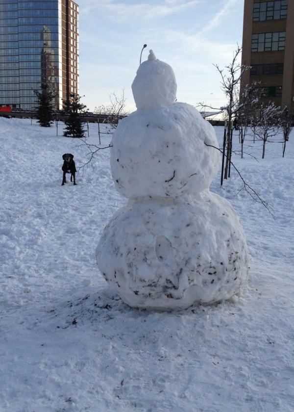 Dailies-David-Weeks-4_shiner-and-the-snowman
