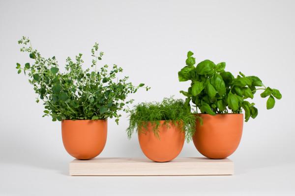 Hallgeir-Homstvedt-12-Grow-Pot