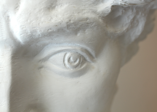 Bust of David, 2012 (detail)