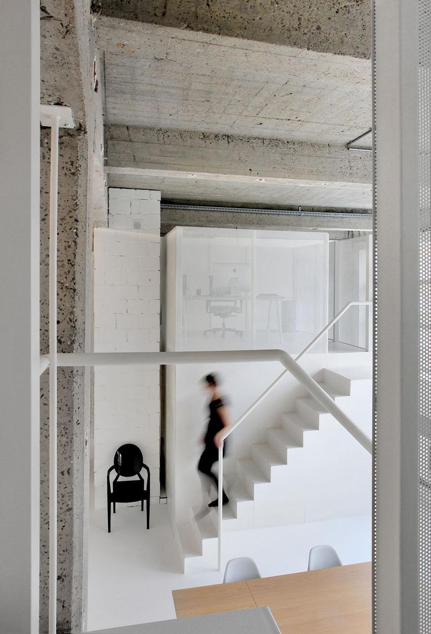 Loft-Forest-adn-architectures-13