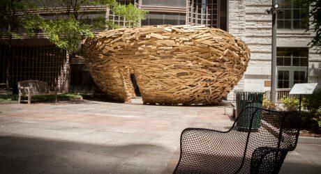 The Reading Nest by Mark Reigelman