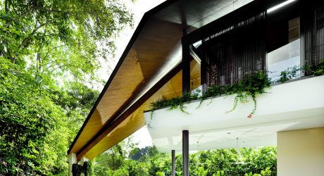 The Winged House by K2LD Architects