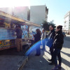 Dailies-Cardenio-Petrucci-9-food-truck