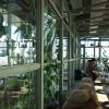 Destin-25Hours-Bikini-Berlin-Hotel-13-greenhouse