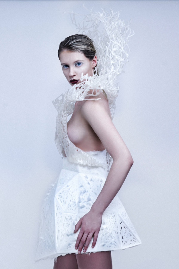 Francis-Bitonti-3D-Printed-Bristle-Dress-4