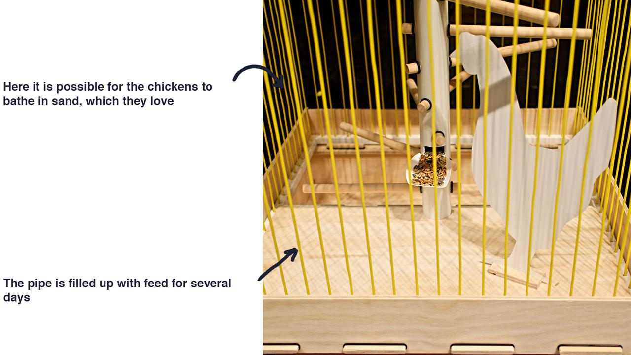 Hons-Chicken-Cage-Anker-Bak-4