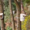 Mikko-Birdhouse-Feeder-Pygmalion-Studio-10