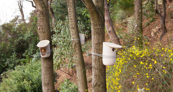 Mikko Birdhouses & Feeders by Pygmalion Studio in main home furnishings  Category