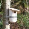 Mikko-Birdhouse-Feeder-Pygmalion-Studio-6