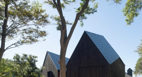 Two-Volumed Bird's Nest House by CUBO Design Architect