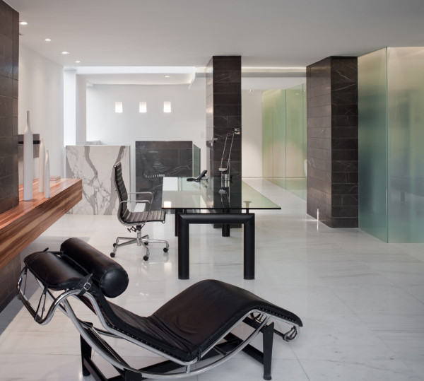 Lassus-Renovation-Schlesinger-Associates-14-study
