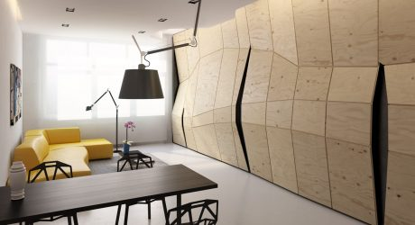 Transforming Apartment Maximizes Small Space