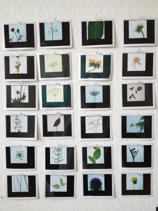 Decon-Designtex-9-8_Polaroid-tests