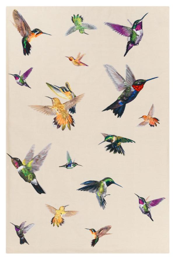 Decon-The-Rug-Company-McQueen-Hummingbird-1