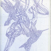 Decon-The-Rug-Company-McQueen-Hummingbird-2-sketch