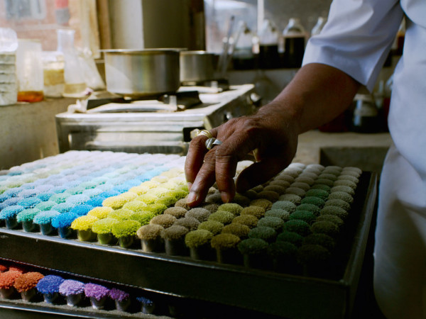 Decon-The-Rug-Company-McQueen-Hummingbird-3-picking-colors