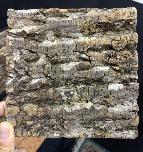 foss-bark-tiles-1