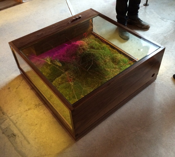 terrarium furniture. terrarium furniture huybuitableterrarium e