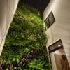 Casa-Ming-LGZ-Taller-de-arquitectura-8a