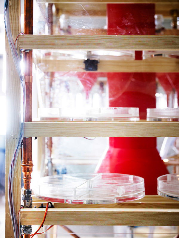 Collaborative Cooking Food Machine-10