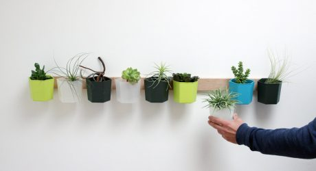 HYVE: A Modular Organization System that Can Grow