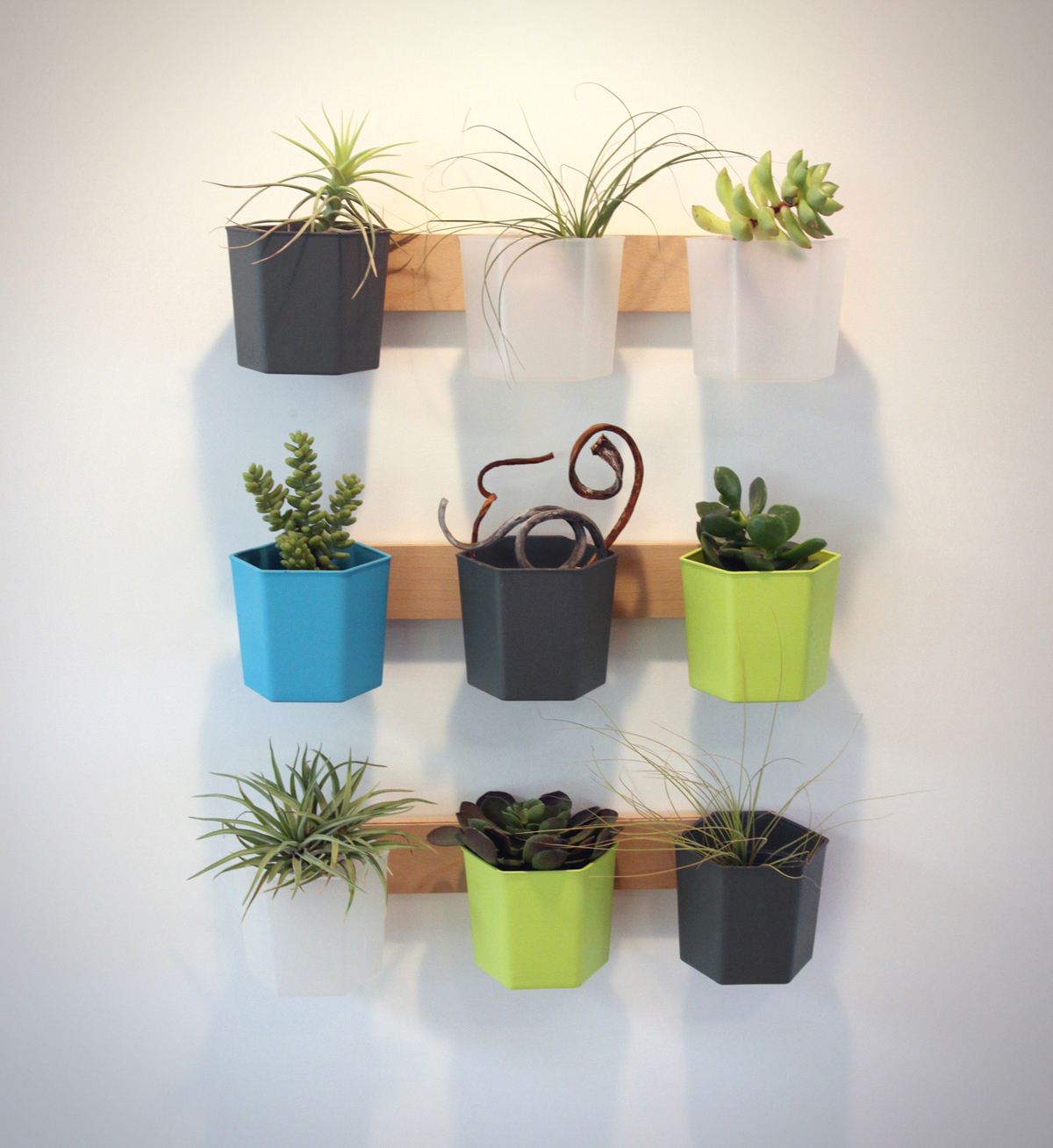 HYVE wall_planks planter