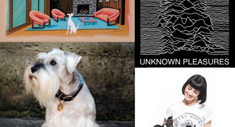 Dog Milk: Best of June 2014