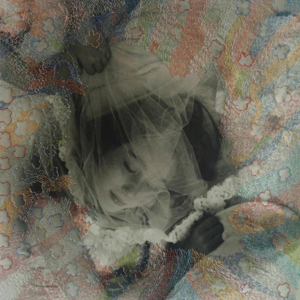 Melissa Zexter, Veil, 2013 @ Melissa Zexter