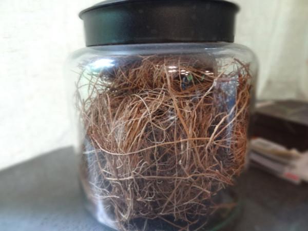 F5-Danny-Seo-5-dried-vetiver-grass