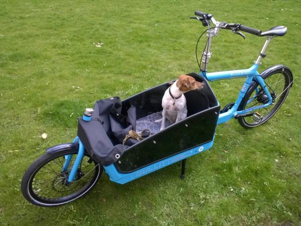 F5-Ole-Jensen-4-bike-dog