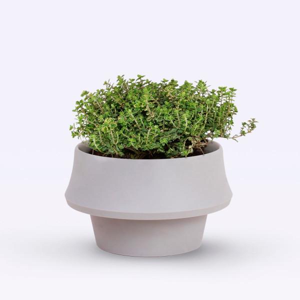 Fold-Pot-Emanuele-Pizzolorusso-Zincere-4