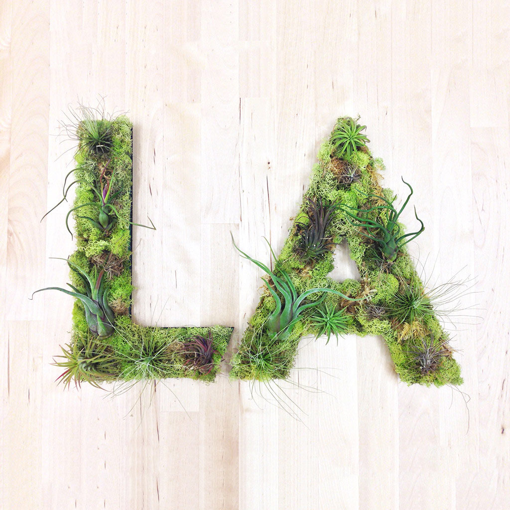 LA-plant-art