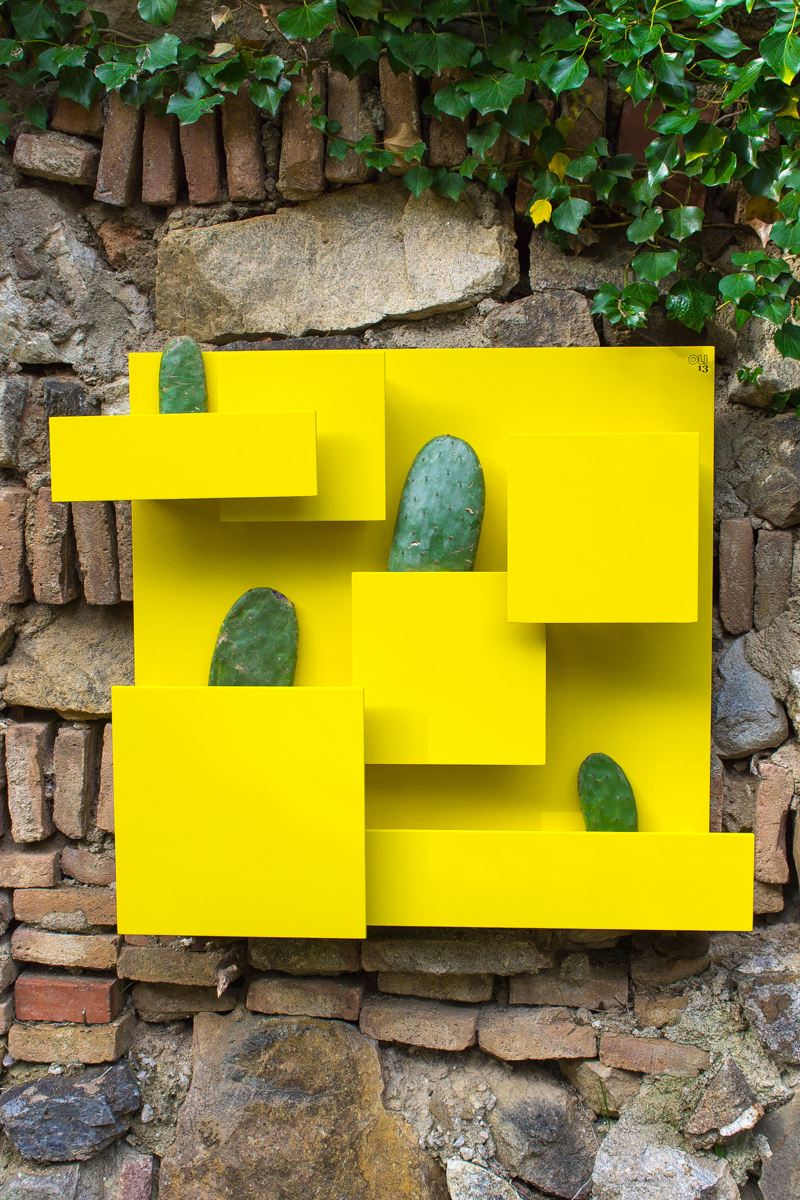 LUIS_cactus