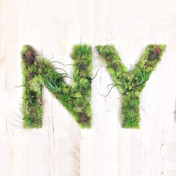 Elegant NYC Plant Art Living Wall Planter