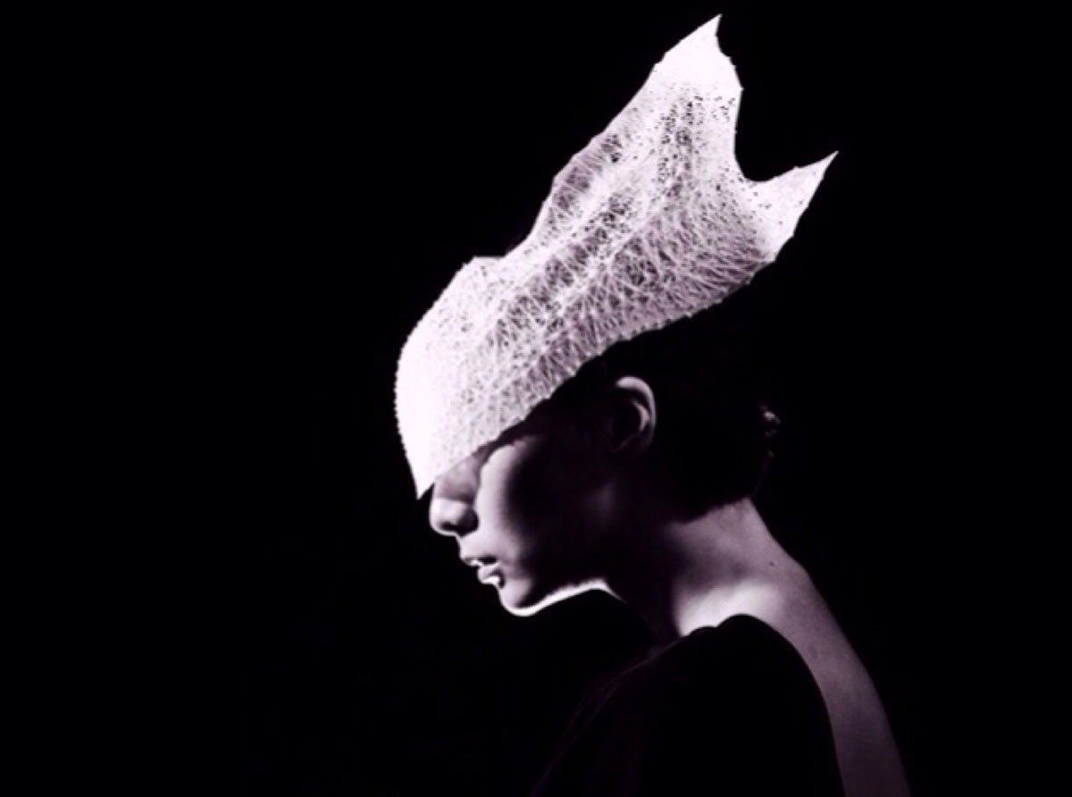 Pinup2014-7-Jury-Winner_Shapes-Future-Award_Yuan_Jiang_Ephemeral-beauty