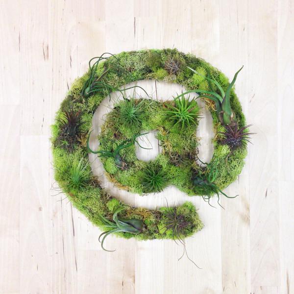 Beautiful A Symbol Plant Art Living Wall Planter
