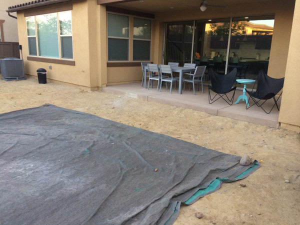 Backyard looking at patio (before)