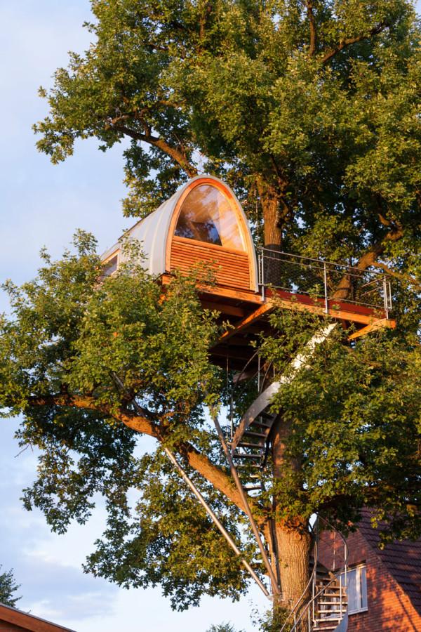 baumraum-Treehouse-Around-the-Oak-3