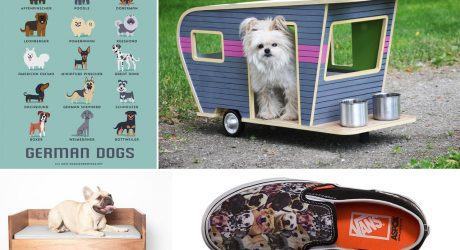 Dog Milk: Best of July 2014