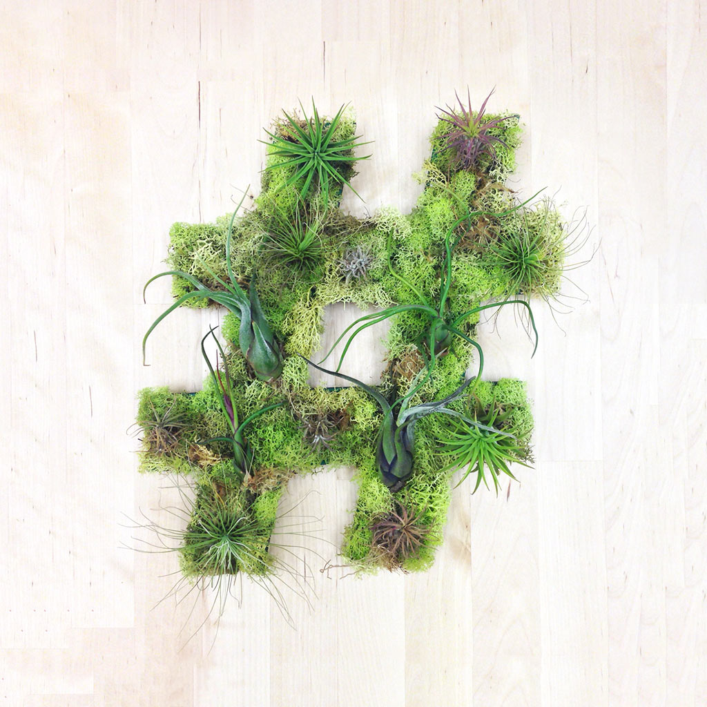 Plant Wall Art unique living wall plant decor from art we heart - design milk