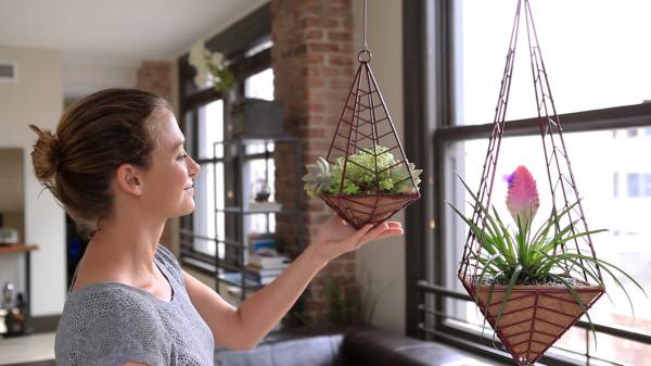 HEDGE-pendants-fig-apartment