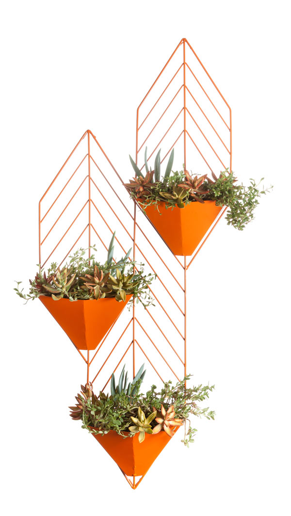 Modern Planters by Hedge Outdoor in main home furnishings  Category
