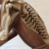 Souvenir Skelton (detail)