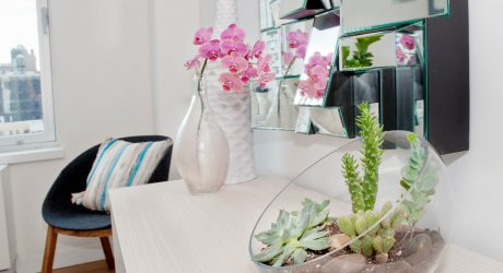 Tips and Tricks for Using Plants in Modern Interior Design + Plant Care Guide